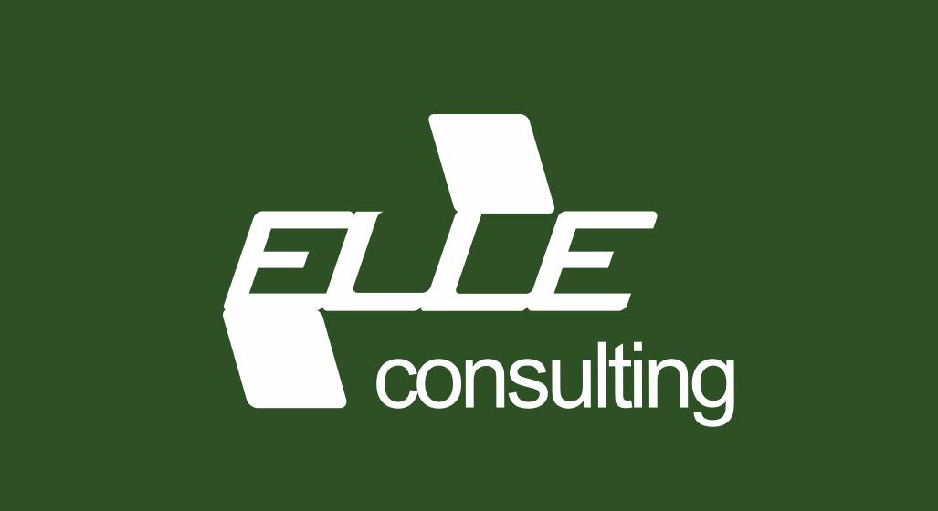 Elle Consulting design realizzazione logo